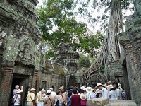 TaProhm_TombRaider.jpg